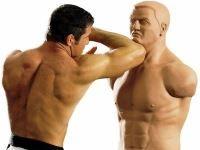 How to choose free standing punching bag: Сentury BOB vs Slam Man review